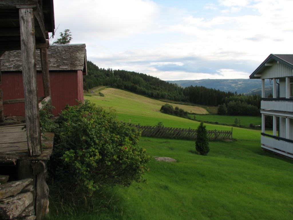 Bjerke fields