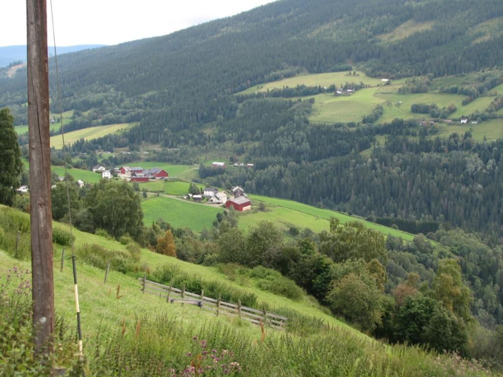 Flaate field