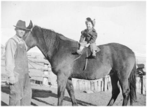 1939ikedarhorse