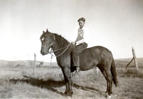 1939lov-horse