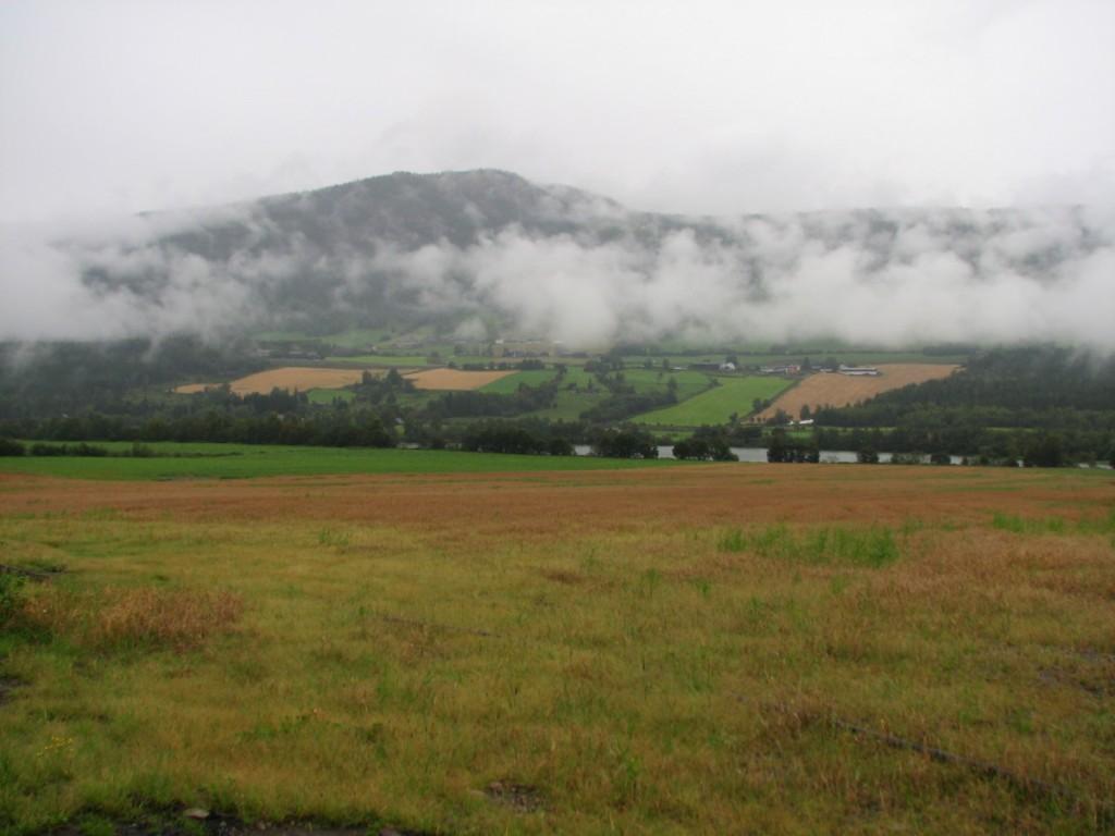 Volden field
