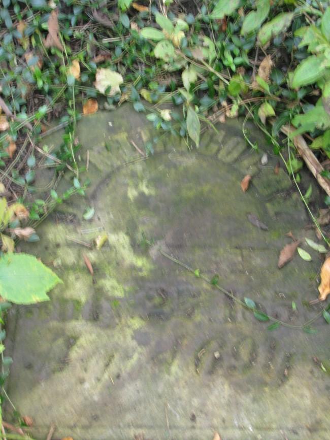 Daniel Colby stone