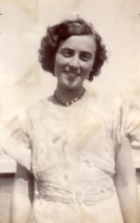 1933creashorthair